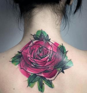 Rosa, lineas y acuarela