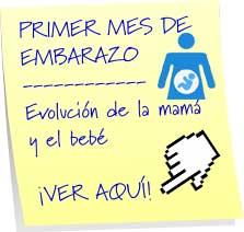 primer mes embarazo