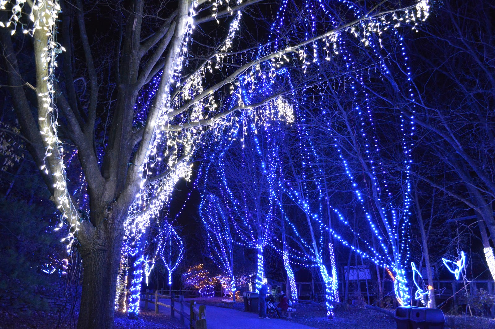Zoo Lights Detroit Zoo 2017