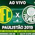 Jogo Mirassol x Palmeiras Ao Vivo 09/03/2019