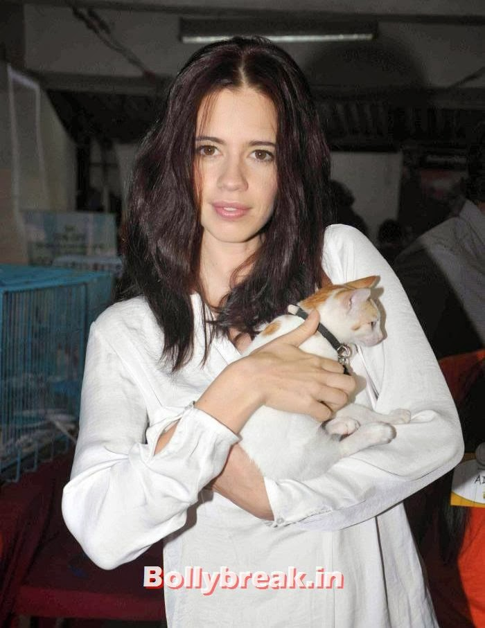 Kalki Koechlin, Sonali Bendre, Kalki Koechlin at Pet Adoption 2013