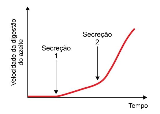 o gráfico mostra a velocidade da digestão do azeite ao longo do tempo