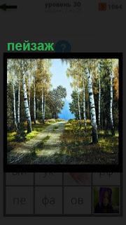 пейзаж в лесу, где стоят березы и проходит тропа среди них