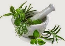 Image Cara mengatasi penyakit kelamin kencing nanah dengan obat herbal