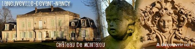 http://patrimoine-de-lorraine.blogspot.fr/2015/05/laneuveville-devant-nancy-54-chateau-de.html