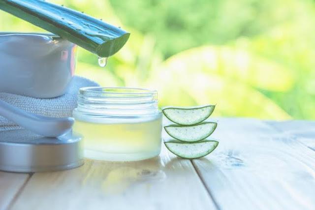 एलोवेरा के फायदे (Aloe vera Benefits in Hindi), उपयोग और नुक़्सानो के बारेमें