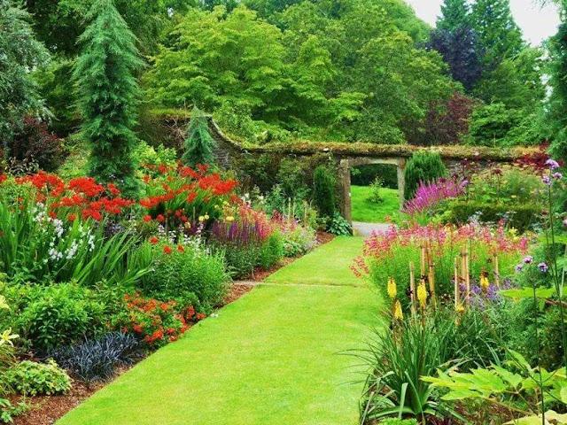 vườn địa đàng tại dự án the green daisy