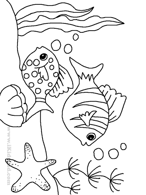Fish And Sea Star Coloring Picture