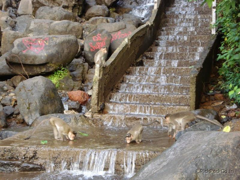 Ambolim - Hill station near Goa - Pick, Pack, Go