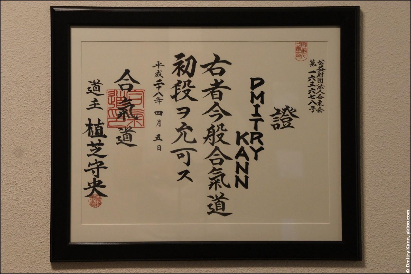 Shodan certificate.
