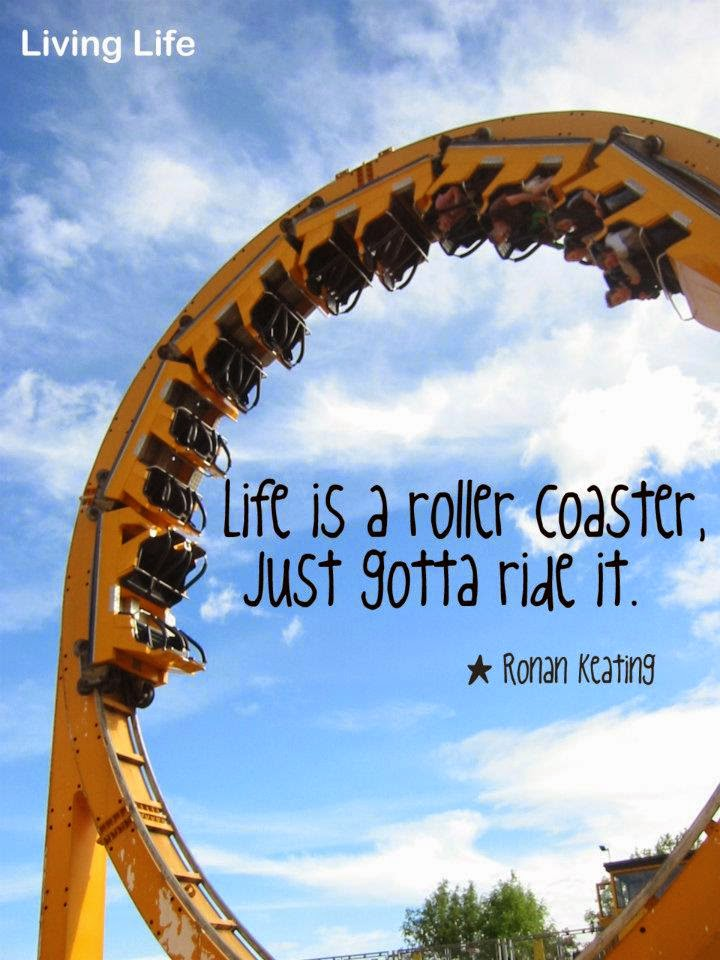 Life Is A Roller Coasterjust Gotta Ride It Quotes