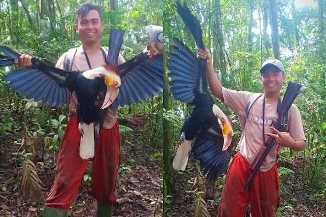 'Bangga' Bisa Tembak Burung Rangkong yang Langka, Pria ini Berpotensi Dipenjara hingga 5 Tahun