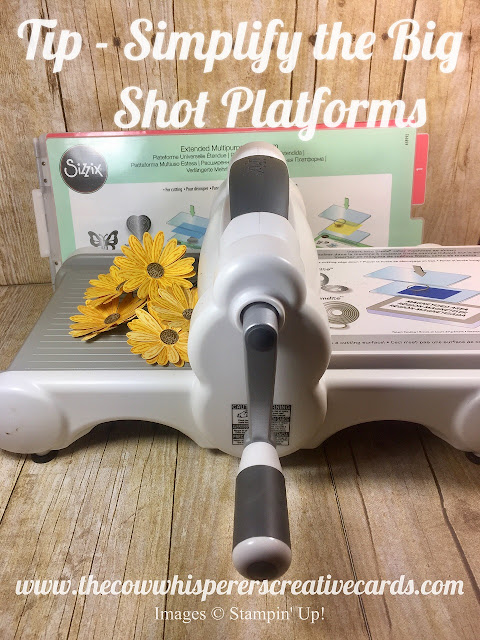 Big Shot, Platform, Stampin Up, Card, Tip, Organize