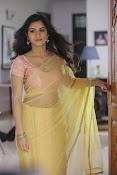 Neha Krishna Photoshoot-thumbnail-9