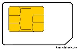 SIM Card Kya Hai SIM Ka Hindi Kya Hota Hai SIM Ka Avishkar Kisne ...