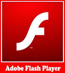 adobe flash player non ie offline installer