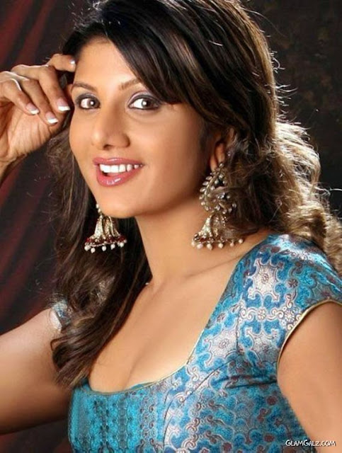 south indian actress hot navel photos in saree