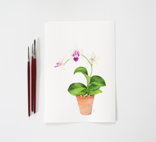 watercolor, orchids, watercolor orchid, Anne Butera, My Giant Strawberry