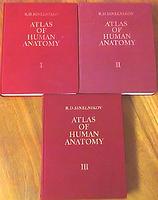 Atlas de anatomia humana de sinelnikov