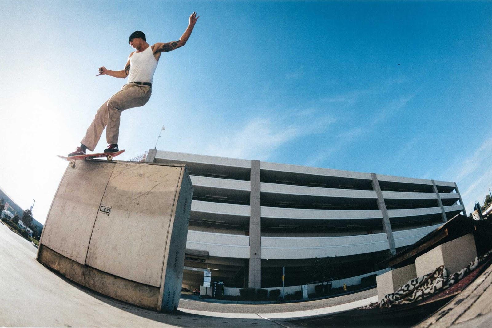 grip skateboard vans