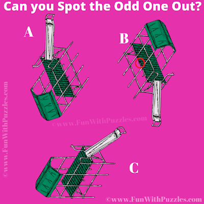 Answer of Odd One Out Slider Picture Riddle for Kids