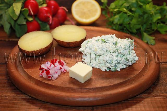 рецепт польской закуски с творогом и редисом