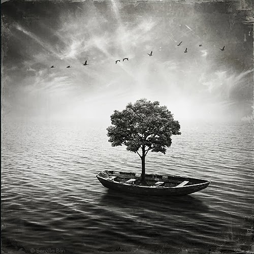 09-Surreal-Photo-Manipulation-Sarolta-Bán-www-designstack-co
