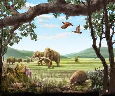 Período Quaternário (1,6 milhão de anos)