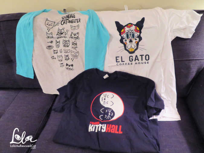 catfe lounge, rahway kitty hall, el gato coffee house
