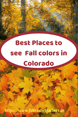 5 Best Places to see fall colors in Colorado