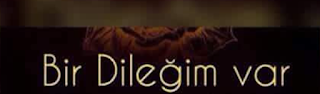 DİLEK ZİKRİ