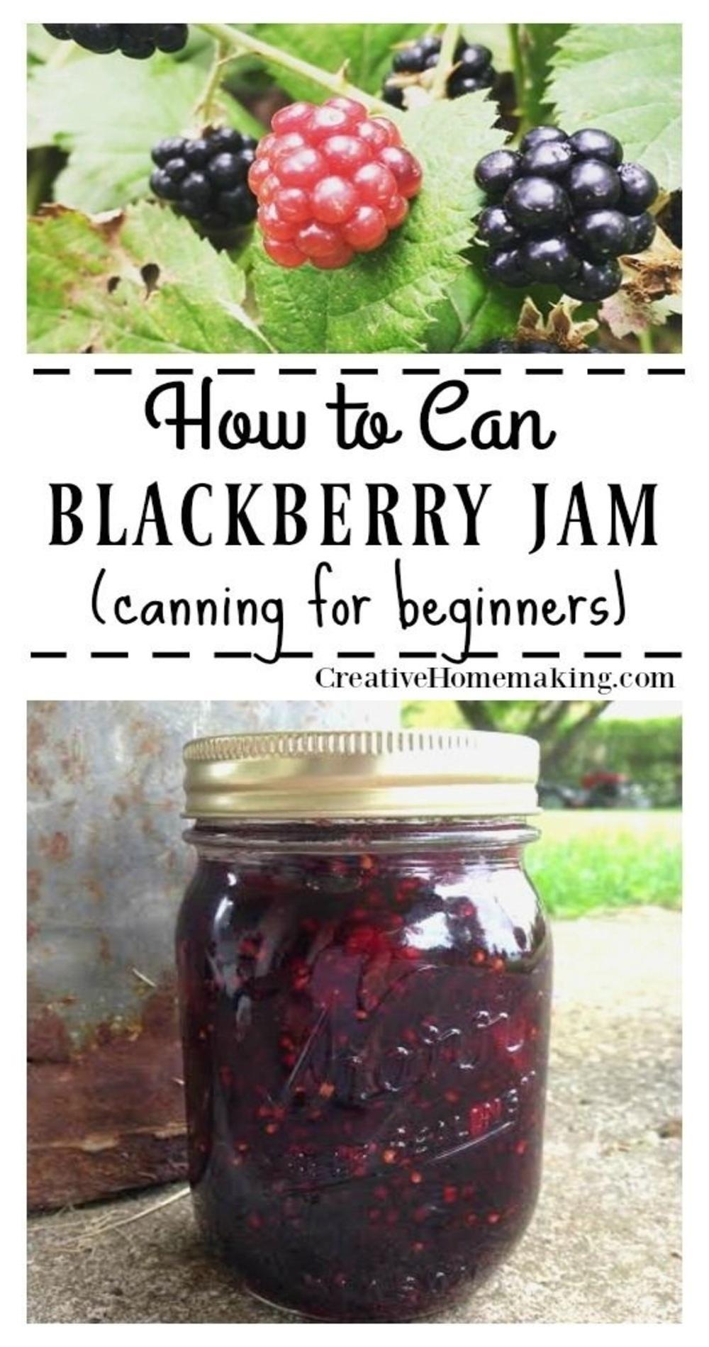 Blackberry Jam with Powdered Pectin