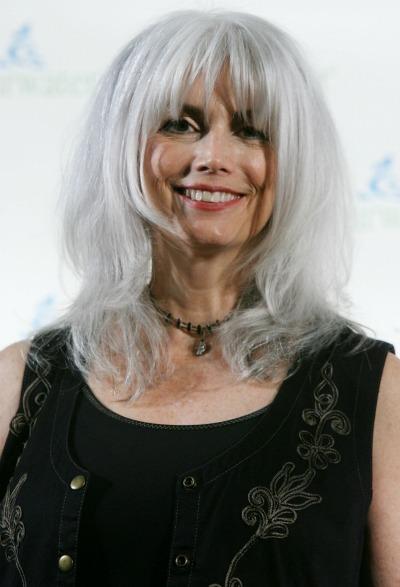 Hair Ink Straight Long Gray Hair Ladies