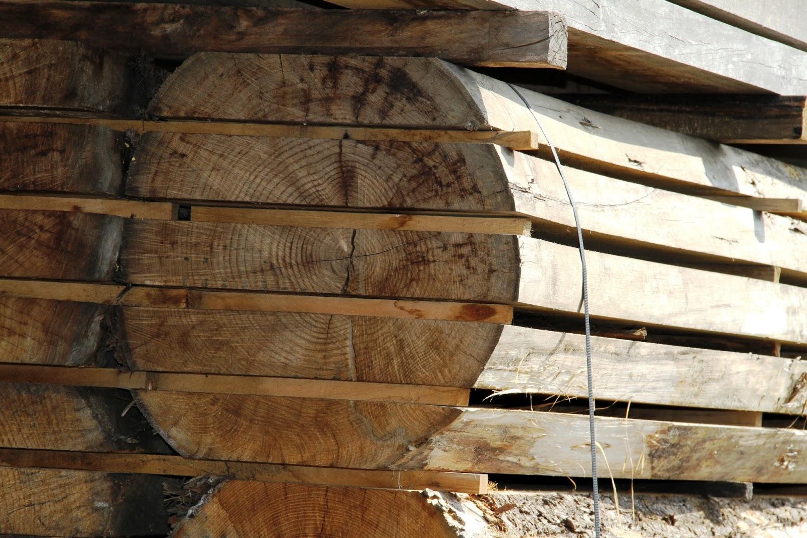 Che Cos È Il Legno che cos'È il legno ? - blog | fratelli bergo