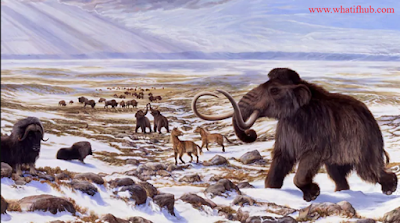 If the ice age extended at it's maximum, glaciers spread throughout all of Present-day Canada. In our timeline, the ancestors of native Americans simply called the Clovis people, entered through the pass in the melting glaciers about 16,000 years ago.What if The Ice Age never ended?