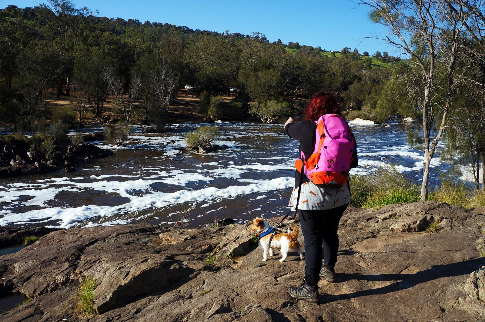 Bells Rapids Walk Trail Bells Rapids Reserve The Long