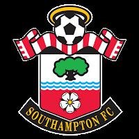 2018-2019 Southampton FC DLS Logo