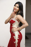 Rachana Smit in Red Deep neck Sleeveless Gown at Idem Deyyam music launch ~ Celebrities Exclusive Galleries 068.JPG