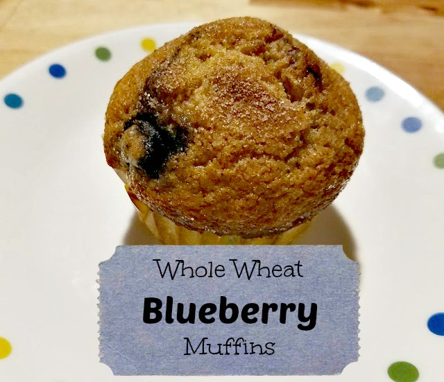 THE REHOMESTEADERS: Whole Wheat Blueberry Muffins