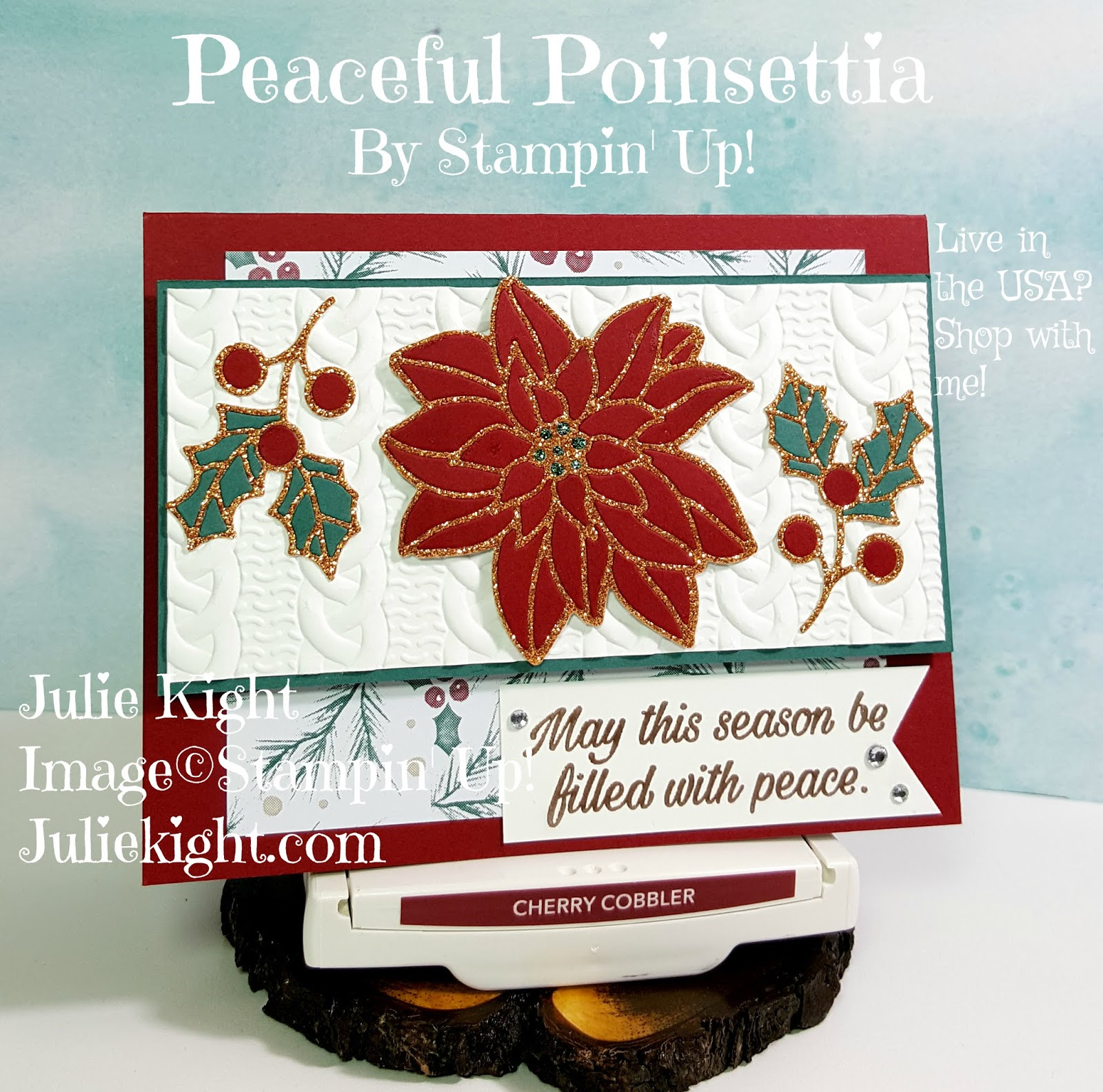 Peaceful Poinsettia Christmas Card - GDP Sketch Challenge #158