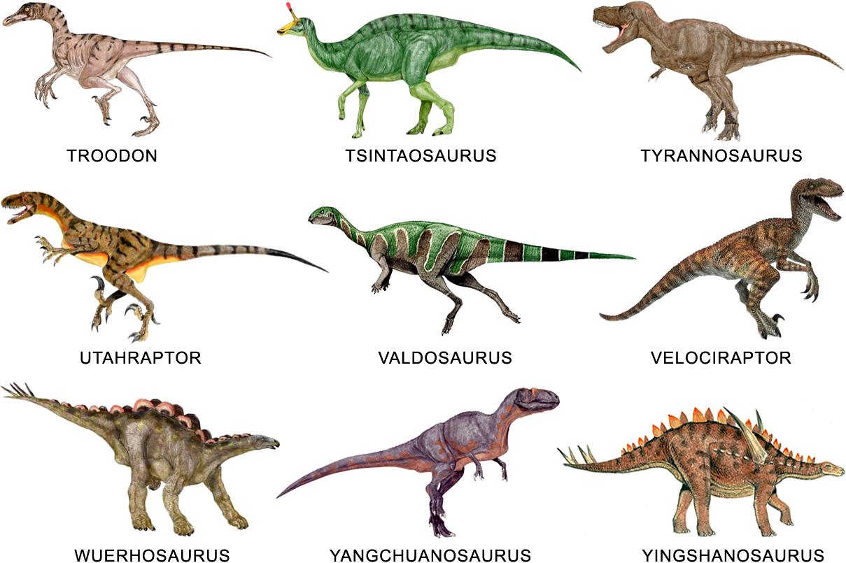 Webquest Creator 2 Aprende sobre la evolución de los primeros herbívoros y el hallazgo del iguanodon en el siglo xix. webquest creator 2