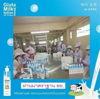 Produksi pembuatan gluta milky lotion by kana