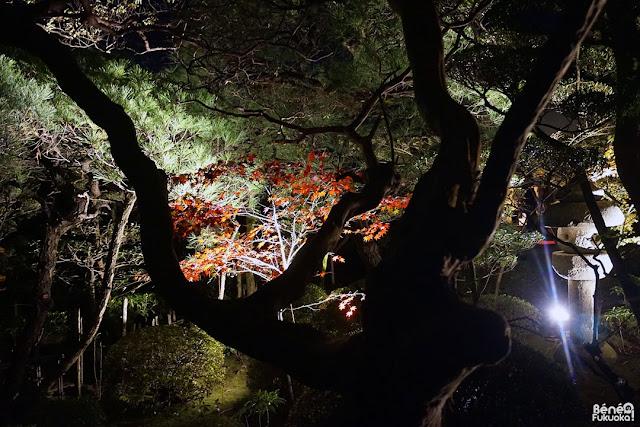 Engaku-ji temple, Fukuoka