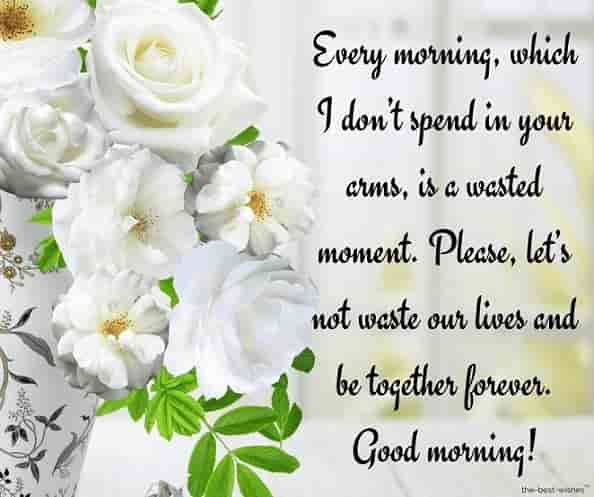 beautiful good morning text with white flower pot