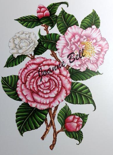 flowers by power poppy coloured with copic markers in pinks