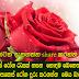 rosamal watura wala rahasa