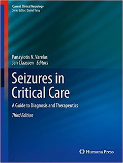 Seizures in Critical Care: A Guide to Diagnosis and Therapeutics 1