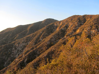 View northwest toward Hastings Peak from Bailey Canyon Trial above Sierra Madre, Angeles National Forest