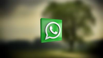 Cara Mendapatkan Update Terbaru Fouad WhatsApp Mod Messenger
