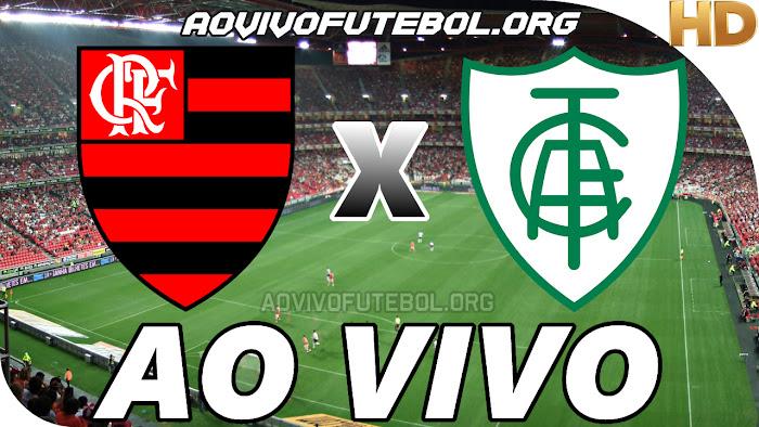 Assistir Flamengo x América Mineiro Ao Vivo HD